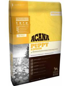 acana-puppy